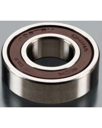 BEARING REAR 6002 DLE30