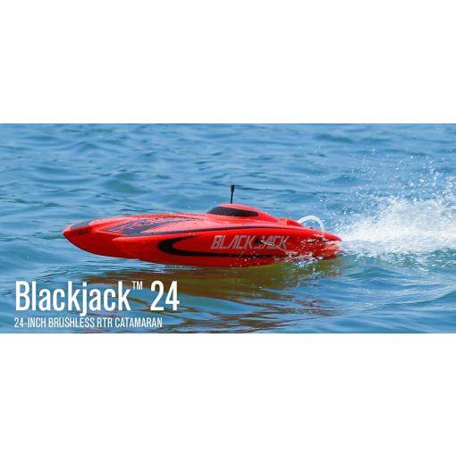 Blackjack 24-inch Catamaran Brushless RTR